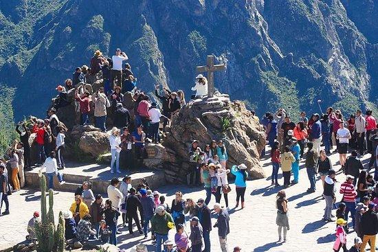Excursion 1 Jour au Canyon de Colca